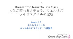 Lesson10.ストレスリリース~ウェルネスピラミッド3段階目