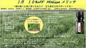 OTG-10%off-メリッサ